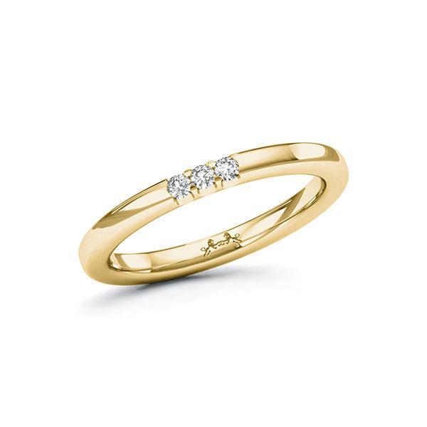 Memoire/Diamantring in Gelbgold 585 mit zus. 0,09 ct. Brillant tw, si von Steinberg - Q-11QPQ1-G5-1U0KK5Z
